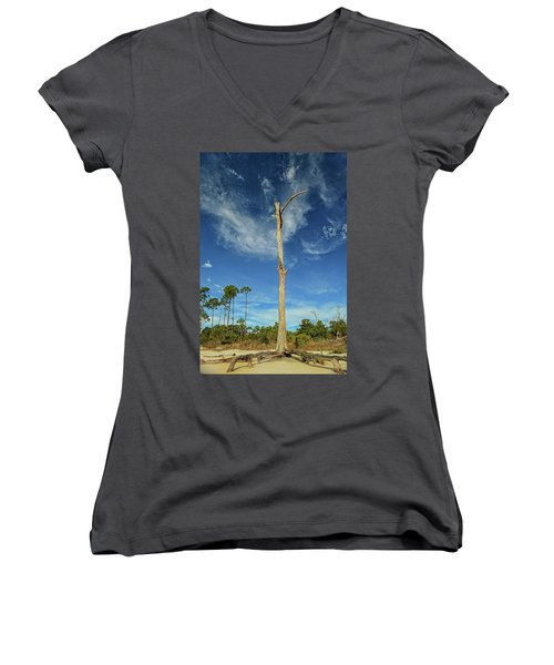 Blue Skies And Broken Branches Women's V-Neck