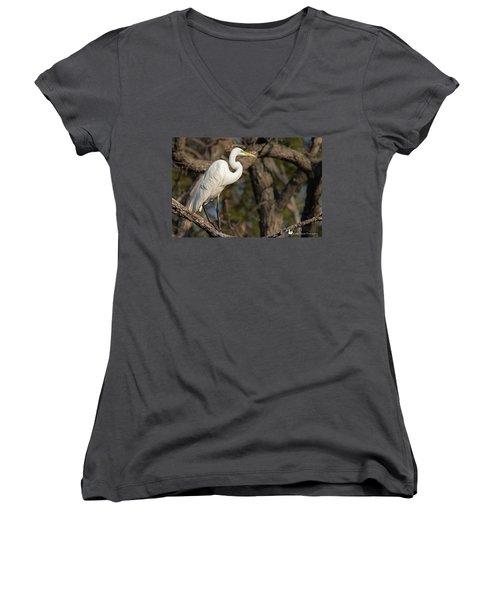 Bright White Heron Women's V-Neck