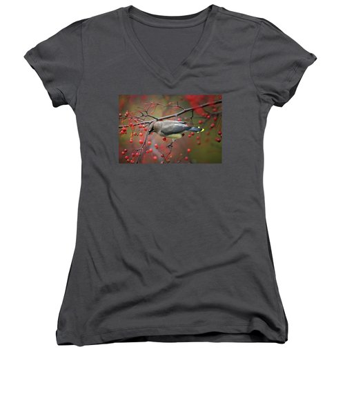 Cedar Waxwing 102206 Women's V-Neck