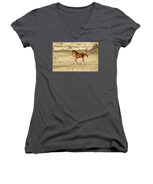 Cute Wild Bay Foal Galloping Across A Field Women's V-Neck