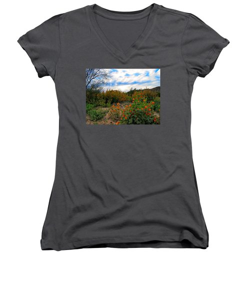 Desert Wildflowers In The Valley Women's V-Neck