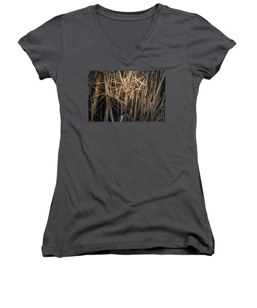 Dried Wild Grass II Women's V-Neck