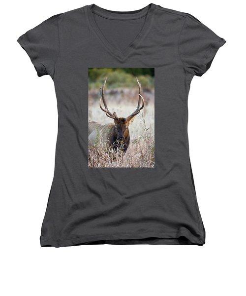 Elk Portrait Women's V-Neck