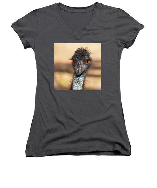 Emu By Itself Outdoors During The Daytime. Women's V-Neck