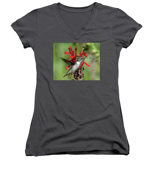 Female Ruby-throated Hummingbird Dsb0325 Women's V-Neck