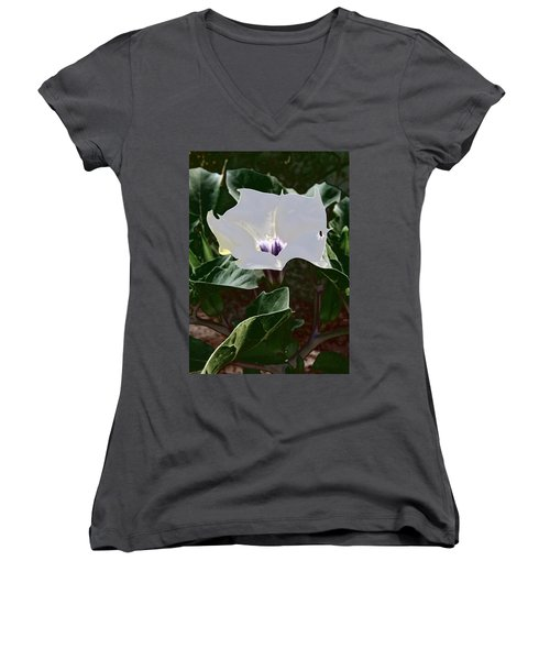 Women's V-Neck (Athletic Fit) featuring the photograph Flower And Fly by Judy Kennedy