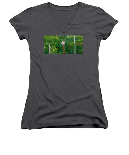 Giraffe Looking For Food During The Daytime. Women's V-Neck