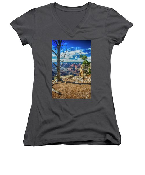 Grand Canyon Springs New Life Women's V-Neck