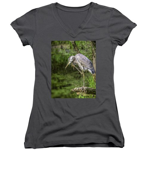 Great Blue Heron Itch Women's V-Neck