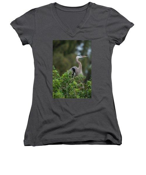 Great Blue Heron Portrait Women's V-Neck