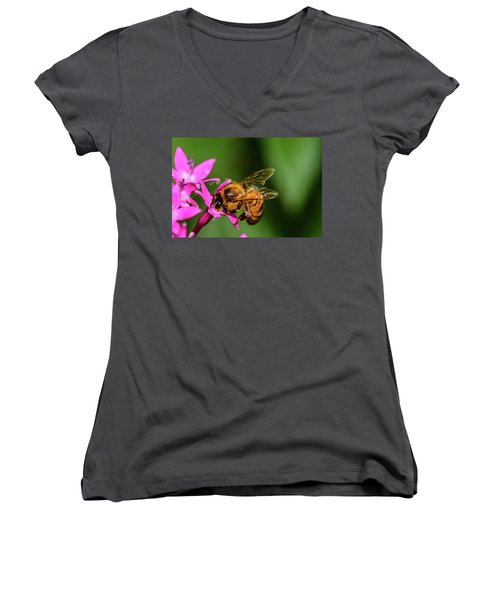 Honey Bee Women's V-Neck