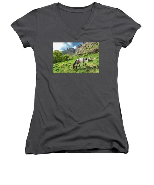 Horse On Balkan Mountain Women's V-Neck