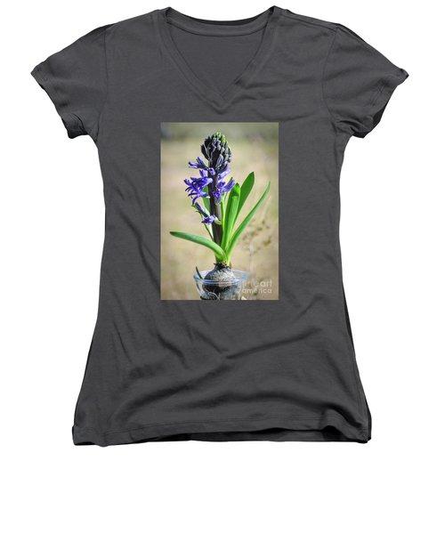Hyacinth Women's V-Neck