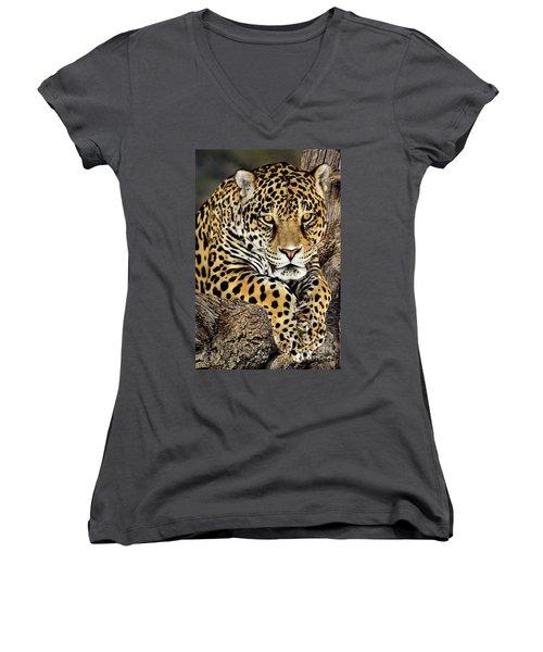 Jaguar Portrait Wildlife Rescue Women's V-Neck