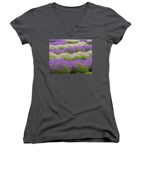 Lavender Field Women's V-Neck