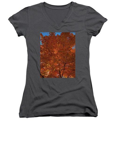 Leaves Of Fire Women's V-Neck