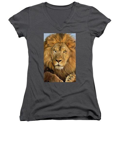 Male African Lion Portrait Wildlife Rescue Women's V-Neck