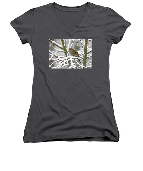 Mourning Dove In Snowstorm Women's V-Neck