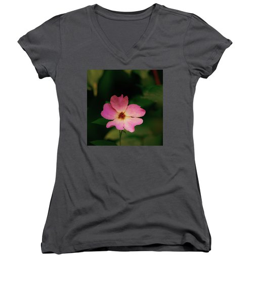 Multi Floral Rose Flower Women's V-Neck
