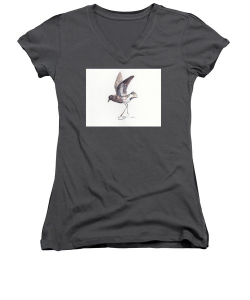 New Zealand Storm Petrel Women's V-Neck