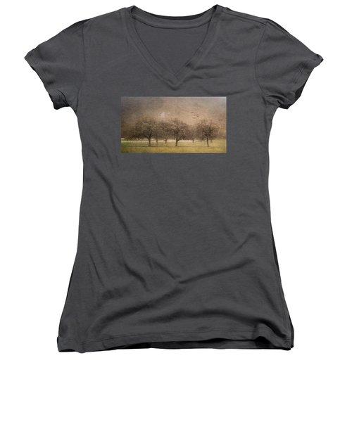 Oak Trees In Fog Women's V-Neck