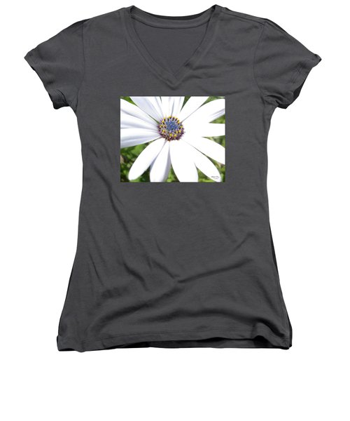 Page 13 From The Book, Peace In The Present Moment. Daisy Brilliance Women's V-Neck