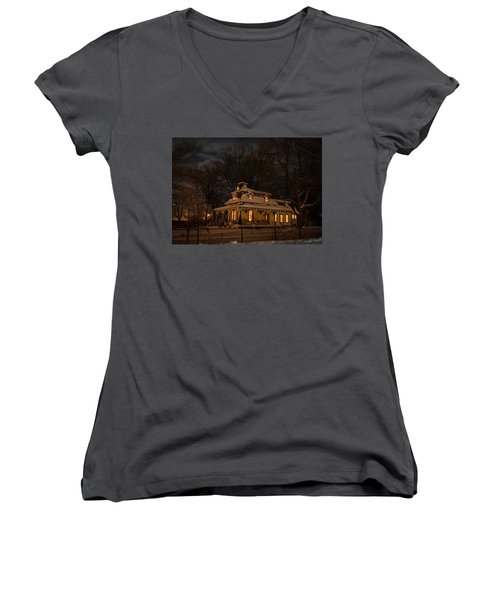 Painted Lady In Winter Women's V-Neck
