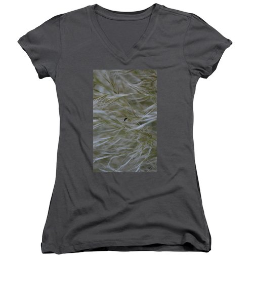 Pampas Grass And Insect Women's V-Neck