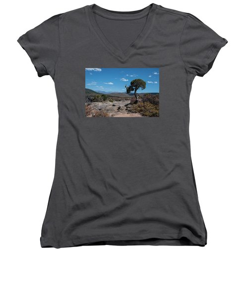 Pinyon Pine With North Rim In Background Black Canyon Of The Gunnison Women's V-Neck