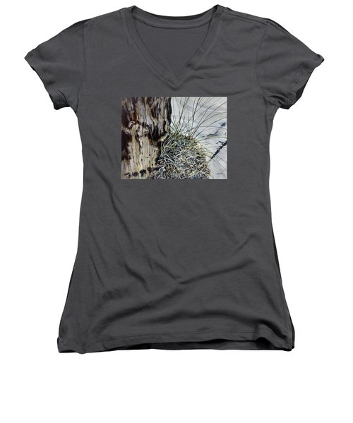 Promise Women's V-Neck