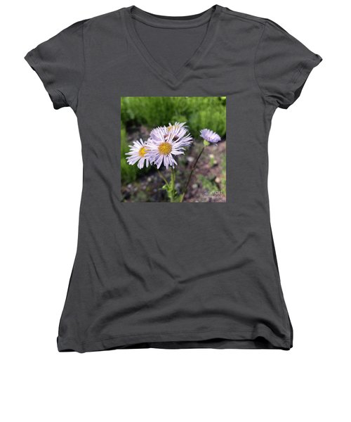 Purple Fleabane 5 Women's V-Neck