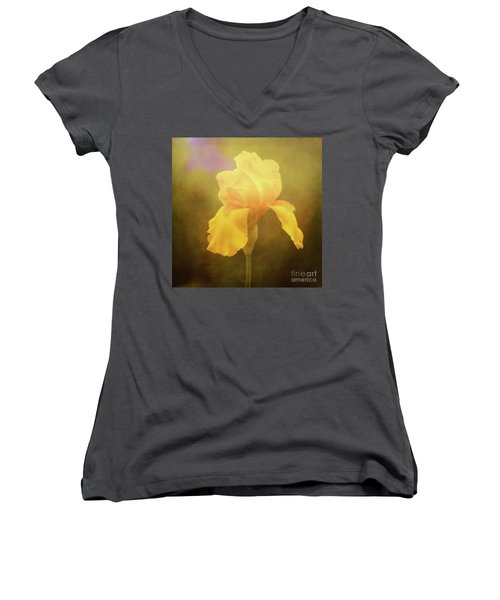 Radiant Yellow Iris With A Vintage Touch Women's V-Neck
