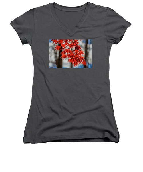 Red Leaves Women's V-Neck