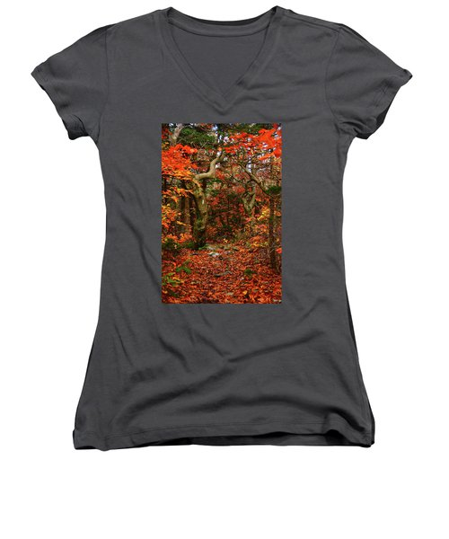 Women's V-Neck (Athletic Fit) featuring the photograph Red Oaks And At Blaze Vertical by Raymond Salani III