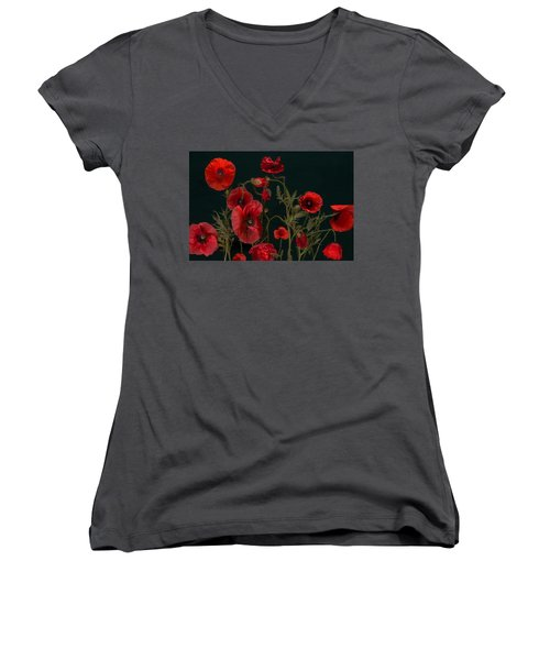 Red Poppies On Black Women's V-Neck (Athletic Fit)