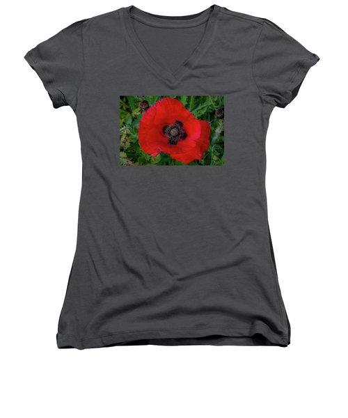 Red Poppy Women's V-Neck