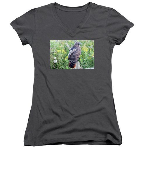 Red-tailed Hawk On Fence Post Women's V-Neck