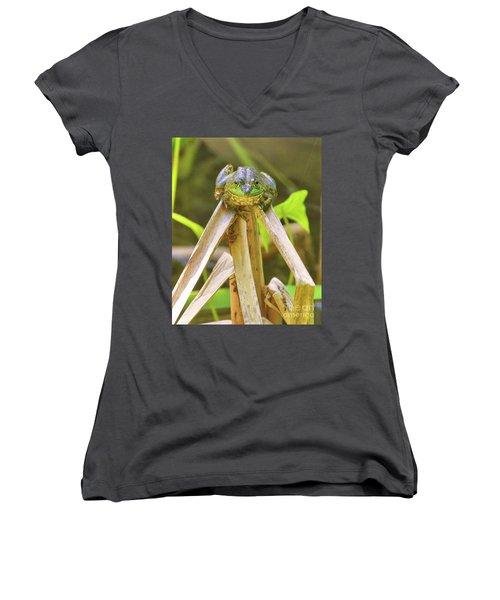 Reeds Bully Women's V-Neck