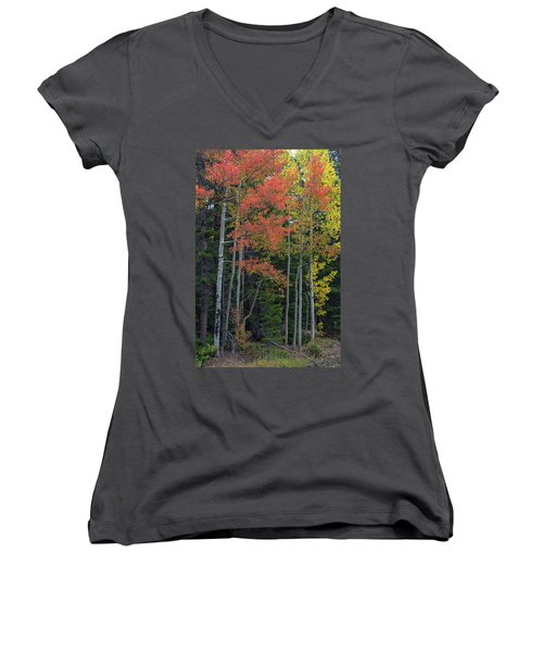 Women's V-Neck featuring the photograph Rocky Mountain Forest Reds by James BO Insogna