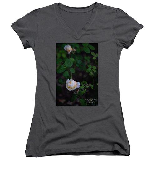 Rose Collection Women's V-Neck