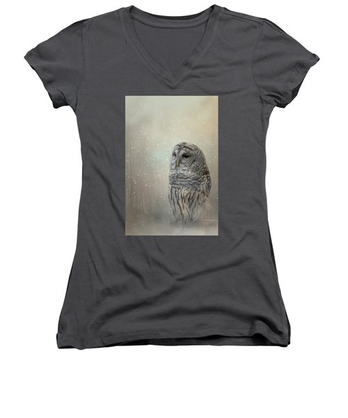 Silent Snow Fall Women's V-Neck