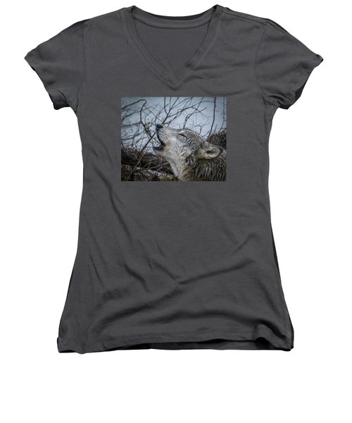 Singing The Song Of My People Women's V-Neck