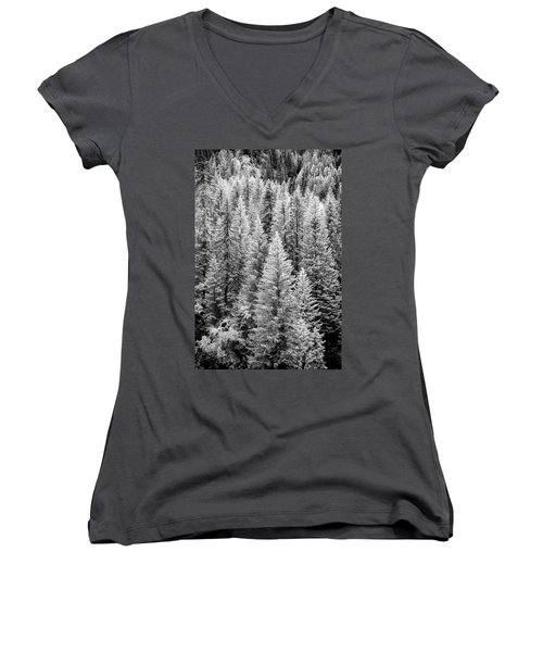 Standing Tall In The French Alps Women's V-Neck
