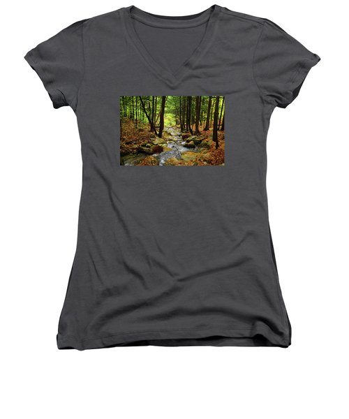 Women's V-Neck (Athletic Fit) featuring the photograph Stream Rages Horizontal Format by Raymond Salani III