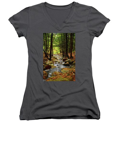 Women's V-Neck (Athletic Fit) featuring the photograph Stream Rages Vertical Format by Raymond Salani III