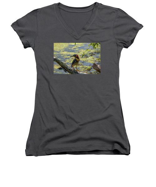 Women's V-Neck featuring the photograph Striking A Pose by Kevin Banker