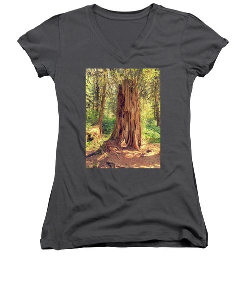 Stump In The Rainforest Women's V-Neck