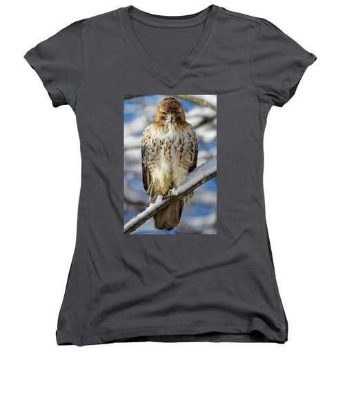 Women's V-Neck featuring the photograph The Look, Red Tailed Hawk 1 by Michael Hubley
