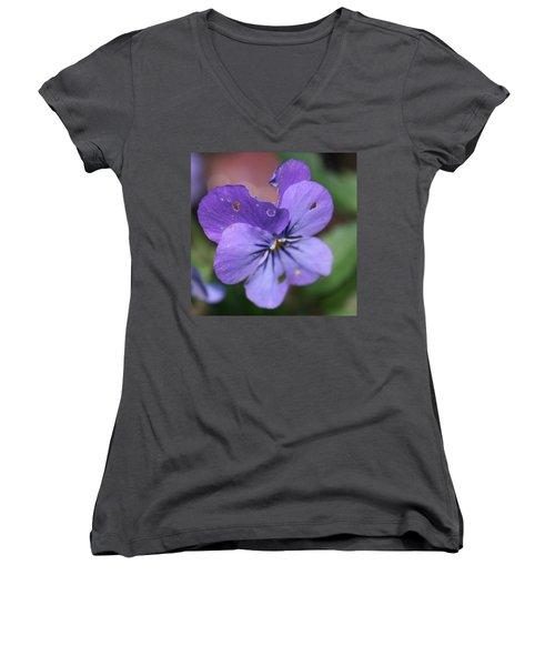 The Raggedy Viola Women's V-Neck
