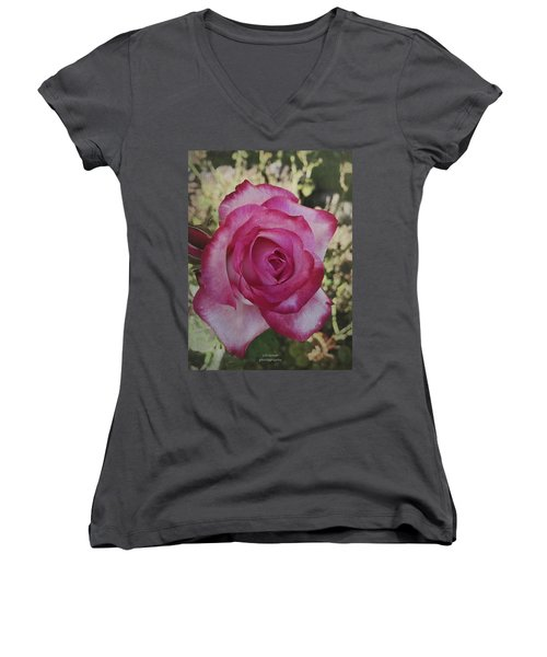 The Rose Women's V-Neck